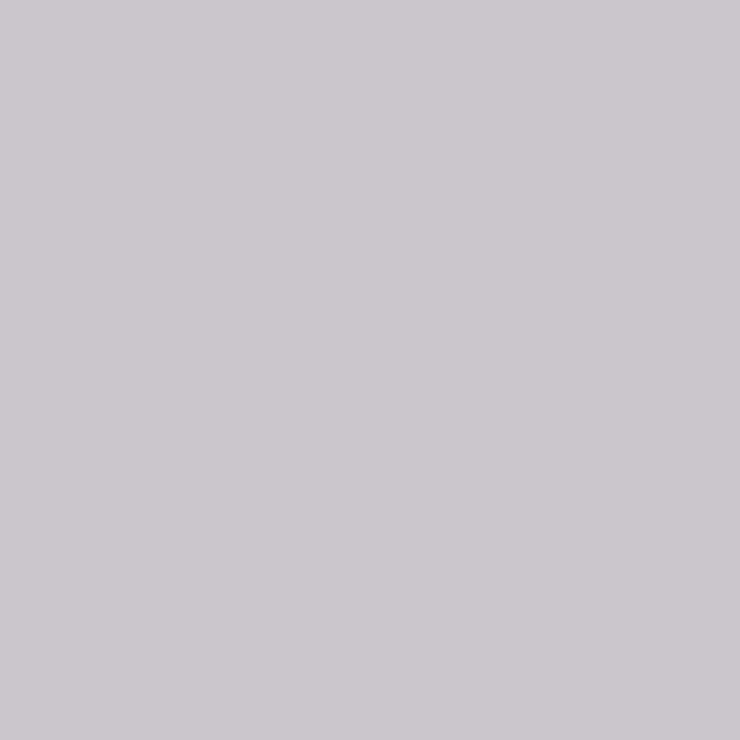 Ash Grey Satin