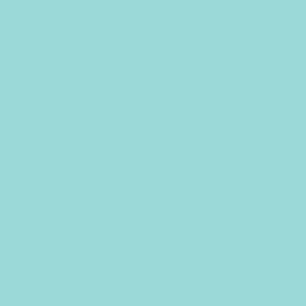 Spearmint Green Pastel