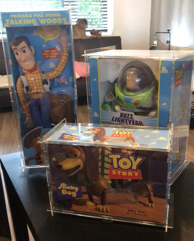 Toy Story Cases